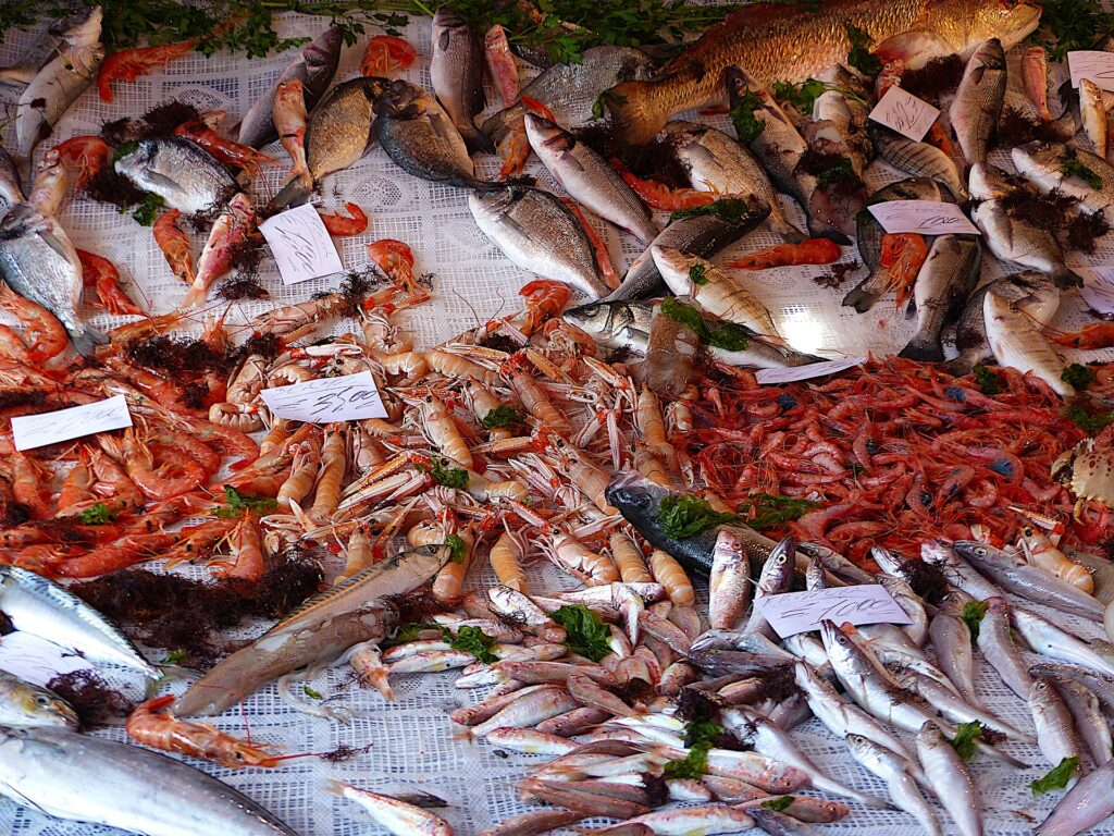 Fish sold at the market in Palermo